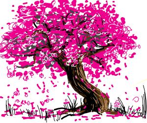 Cheryy blossom tree