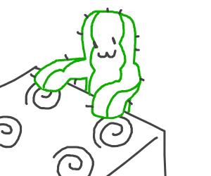 Cactus playing Bongo on Oven Plates