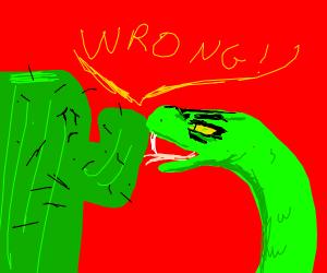 "snake is telling cactus ""wrong!"""