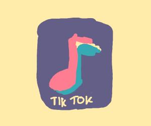 TikTok PIO