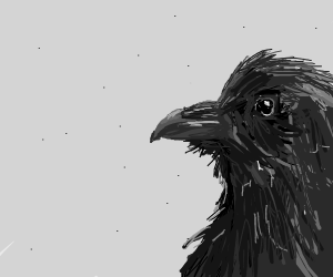 Cute but realistic crow