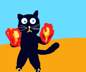 black cat producing fire from paw