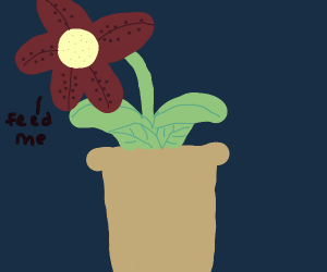 plant wants to eat