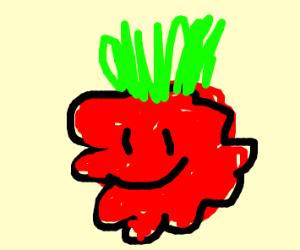 berry from pokemon go