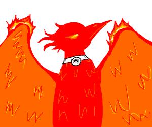 Pet Phoenix