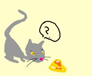 a cat doesnt know whether the gold is fake