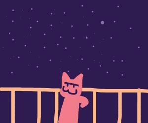 Cute cat sitting on fence under galaxy sky