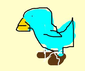 Twitter bird has shoes?