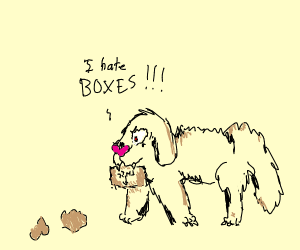 Box abusing dog