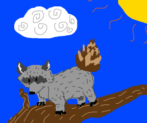 racoon with pinecone tail