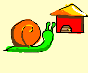 A snail and its house
