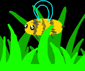 bee flying over grass