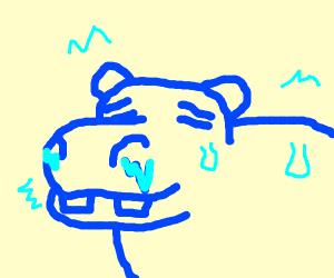 Cold Hippo