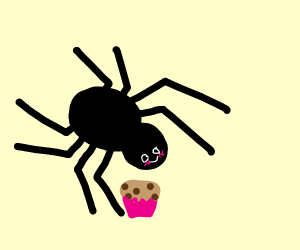 Spider eating muffins