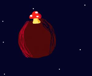 A single mushroom on Pluto