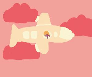 girl on a plain (pink sky)
