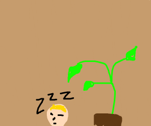 sleeping next to a plant