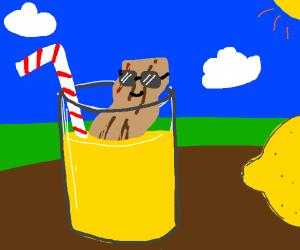 Bacon wearing sunglasses soaking in lemonade