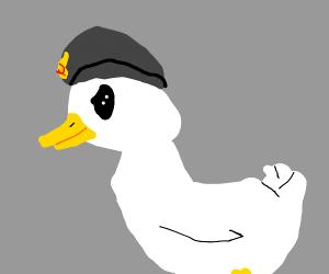 comrade goose