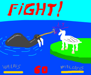 Walrus VS Unicorn