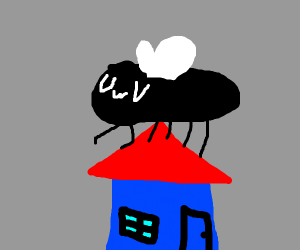 a big fly on top of a blue house uwu
