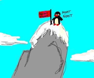 Penguins climb Mount Everest