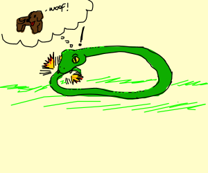 Snake thinks it's a dog and bites its tail