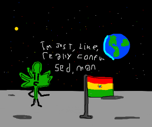 weed with bolivian flag saying im curious man