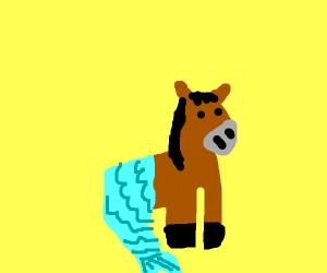 Horse mermaid