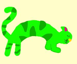 Green cat bowls