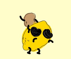 Peanut on mexican lemon