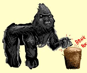 Gorilla playing a bongo