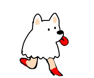 sexy dog