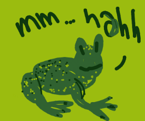 "Frog says ""mm... nahh"""