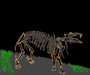 A hippo skeleton