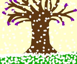 Tree wearing Gloves