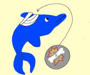 Broken Dolphin