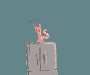 Cats climbing the fridge