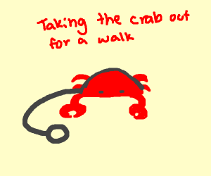 crab on a leash