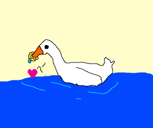 Duck with ring