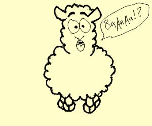 Supprised Sheep Girl