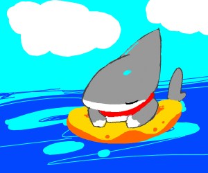Vress the Shark Puppy