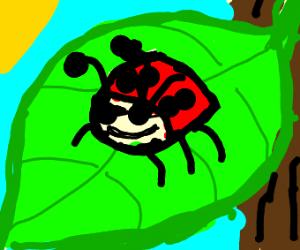 a happy bug boi