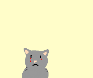 a sad gray cat is crying blood
