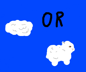 what is fluffier? a cloud or a sheep?