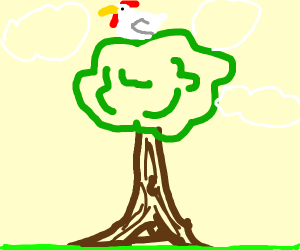 Chicken in the Tree Tops