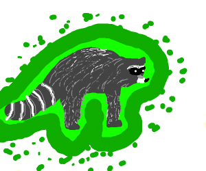 Raccoon emitting a deadly toxin