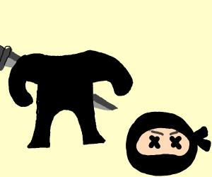 Beheaded ninja
