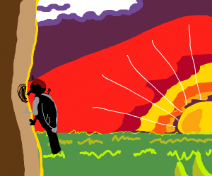 Sunset Woodpecker