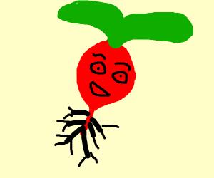 a very happy anime radish